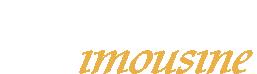 Patriots Limousine Blog Logo